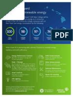 DES Hawaii Infographic