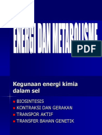 Energi Dan Metabolisme FKM Blok 6 2012