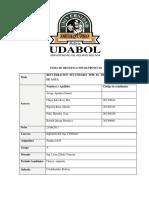 PROYECTO INYECCION DE H2OPRODUCCION II.docx