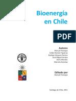 Bioenergía en Chile