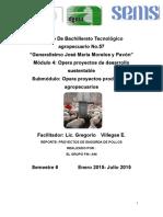 279886160-Informe-Proyecto-Pollos-de-Engorda.docx