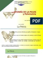 ANATOMÍA DE LA PELVIS Y PELVIMETRÍA.pptx
