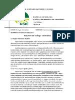 resumen de teologia sistematica imagen.docx