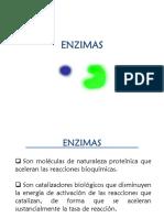1.4.ENZIMAS_24470.pdf