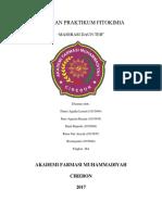 Laporan Fitokimia MASERASI-1