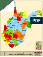 West Virginia Percent of NAS Data 2017