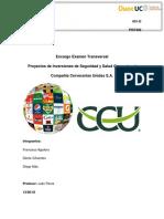 Examen Transversal PIS (Final)