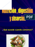 Digestion Absorcion y Nutricion