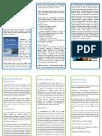 cta pdf 2