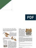 Mushroom Grow Kit ReadyToGrow Download PT