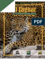 El Jaguar en El Madidi