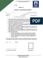 Anexo A1 Mini Convocatoria (1)