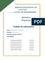 Quimica Org -  Hidrarburos Aromaticos