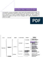 314662785 Ditylenchus PDF
