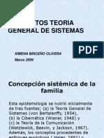 Conceptos de La Teoria General de Sistemas