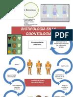 Biotipología en La Odontología