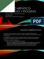 Abceso Hepatico Fernandez