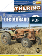 THE WEATHERING Nº 9 DECOLORADO