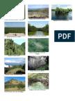 Bosques Húmedos de Peten