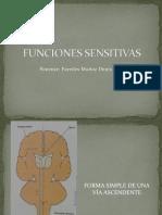 Funciones Sensitivas