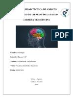 FUCIONES CEREBRALES SUPERIORES.docx