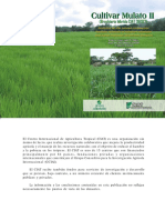 cultivar-mulato-II.pdf