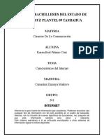 CARACTERÍSTICAS PRINCIPALES DE INTERNET.docx