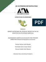 mejoramientogenetico-120124230327-phpapp01