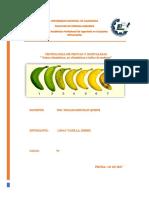 Índice de Madurez-Informe