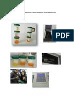 PRACt 7 bio.docx