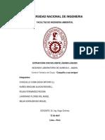 informe de EXTRACCIÓN CON SOLVENTE LÍQUIDO-LÍQUIDO