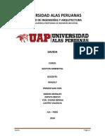 TRABAJO-DE-GESTION-SAVIDA-GESTION AMBIENTAL.docx
