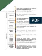 Columna Geologica%2ccampos Taratunich
