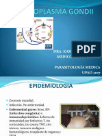 7-Toxoplasma Gondii (1)