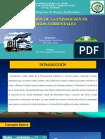 PDF Diapo. Estimación Esposición