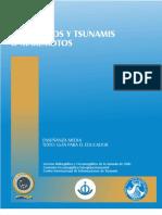 documento para el profesor de enseñanza media sobre tsunami