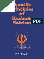 Specific Principles of Kashmir Saivism