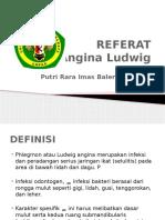 PHLEGMON_2.pdf