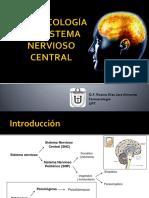1 Farmacología Del Snc 2017