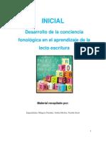 SEPARATA Conciencia Fonologica JUNIO 2018