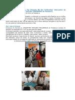 Erasmus Para Prensa,Grecia