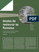032 035 Restauração Florestal 238