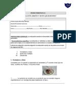 PRUEBA N1 PREPARACIÓN, DISEÑO Y MONTAJE DE BUFFET.docx