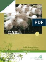 guide_ail_version_finale-1.pdf