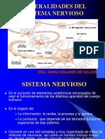 Generalidades Del SNC