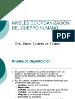 Niveles de Organizacion Del Cuerpo Humano .Ppt