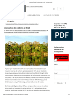 Los Dueños Del Carbono en Brasil - Avispa Midia