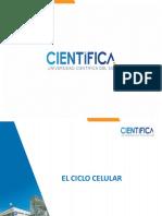 SEMANA_12_-_CICLO_CELULAR-NEO (1).pptx