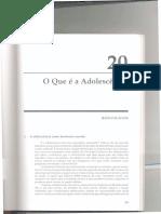 O_que_e_adolescencia.pdf