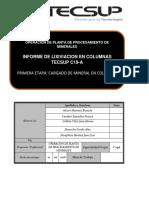 informe de lix de hidro.pdf